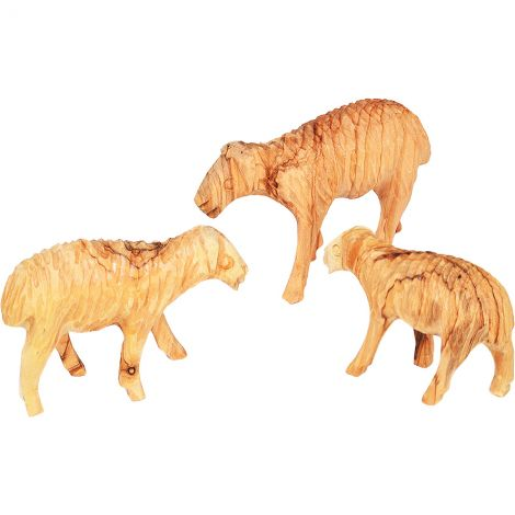 Set of 3 Sheep Made from Olive Wood - Hand Carved in Bethlehem