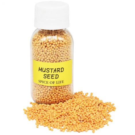 Mustard Seeds from the Holy Land - Spice of Life